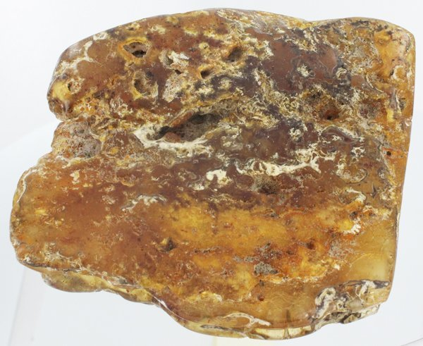 845ct Natural Peru Amber Polished Rough w/Inclusions