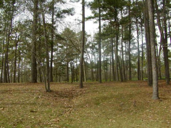LAKE LIVINGSTON TEXAS AREA, CREEK LOT ,UTILITIES, ROAD-