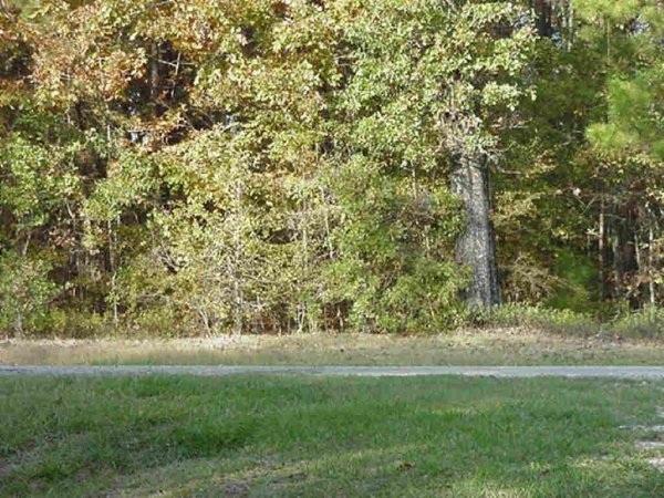 EASTERN  TEXAS AREA  LOT, UTILITIES, ROADS,LAKE,