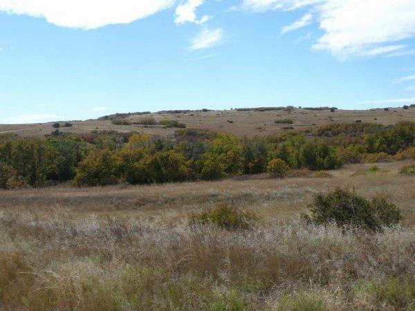 18D: 18D: GREENHORN MTN VIEWS COLORADO  ROAD FRONTAGE