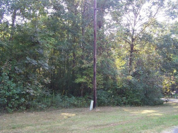 7E: LAKE LIVINGSTON TEXAS LOT, UTILITIES, ROAD,CREEK