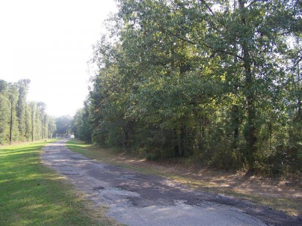 8E: NORTH OF HOUSTON TEXAS, UTILITIES, ROADS,LAKE L