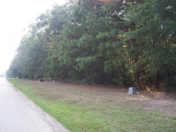 9E: LAKE LIVINGSTON TEXAS , UTILITIES, ROADS,LAKE LOT