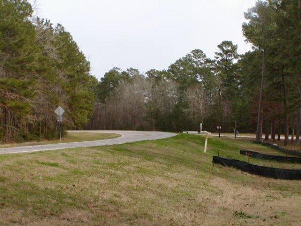 8A: NORTH OF HOUSTON AREA , UTILITIES, ROADS,LAKE LOT