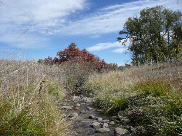 10D: ROAD FRONTAGE GREENHORN MTNS COLORADO,UTILITIES