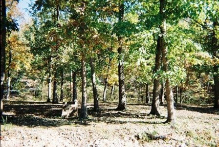 9B: OZARK ACRES LOT NEAR LAKE-UTILITIES,ARKANSAS
