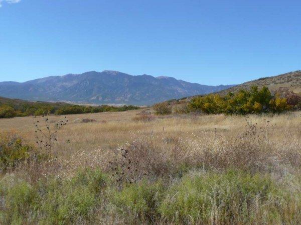 1C: PUEBLO COLORADO AREA 1 AC VIEW LOT IN THE MOUNTAINS