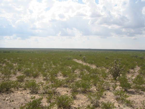 8C: 5.1 AC RIGHT OFF HWY 62-180 TEXAS-NO RESERVE