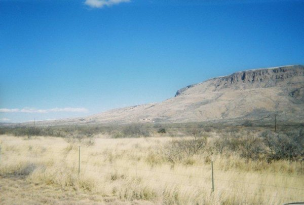 4B: 40 AC ALPINE TEXAS MOUNTAINS-NO RESERVE