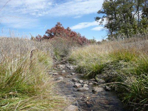 10D: 10D: ROAD FRONTAGE GREENHORN MTN COLORADO LOT ,UTI
