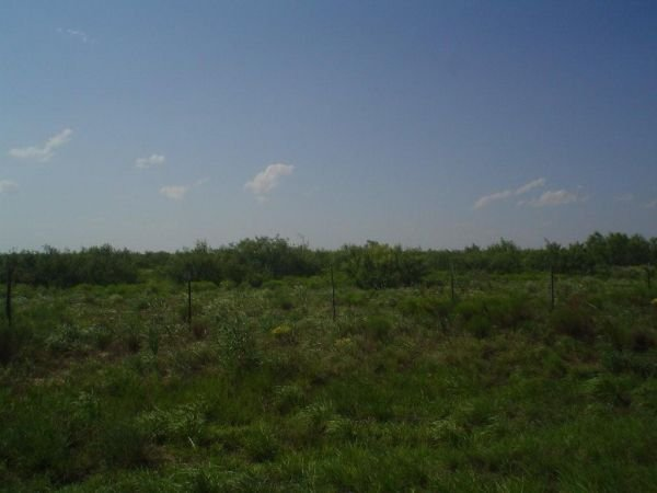 12: 5.17 AC PARCEL, IMPERIAL TEXAS,ROAD,WATER,POWER