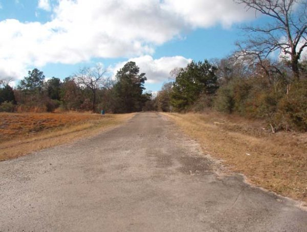 6C: PAVED FM2979 FRONTAGE LOT NEAR HOUSTON TEXAS, ROADS