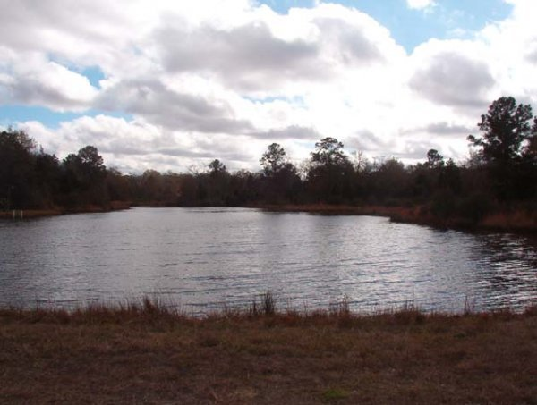 17D: LAKE FRONTAGE LOT ,UTILITIES,  NEAR HOUSTON TEXAS