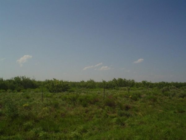 25D: IMPERIAL TEXAS,WATER,POWER, ROAD, 5.1 AC