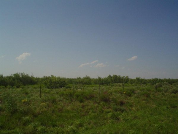 12: 5.1 AC PARCEL, IMPERIAL TEXAS,ROAD,WATER,POWER