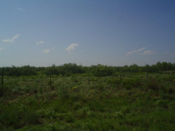 24: 5.1 AC WATER,POWER, ROAD FRONTAGE IMPERIAL TEXAS