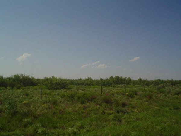 12D: 5.1 AC PARCEL, IMPERIAL TEXAS,ROAD,WATER,POWER