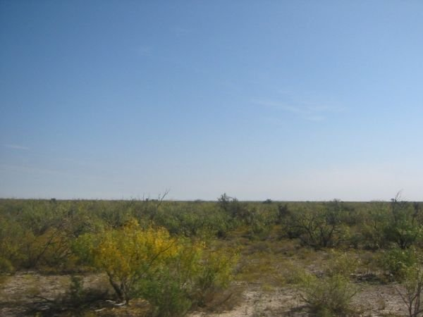 15D: PAVED ROAD FRONTAGE 5.1 AC FORT STOCKTON TEXAS