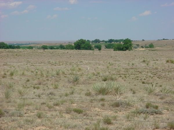 19: EASTERN COLORADO 35.37 AC,NO RES, GREAT DEAL