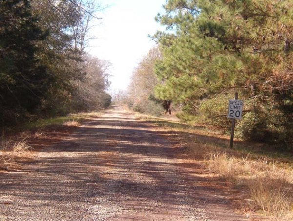 8B: 10 LOT AUCTION EASTERN TEXAS AREA LOTS