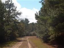13B: EASTERN TEXAS AREA, TREED LOT NEAR LAKE
