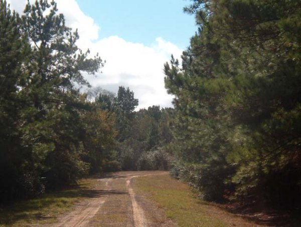 20C: HOUSTON TEXAS AREA,UTILITIES, LOT, NEAR GOLF,