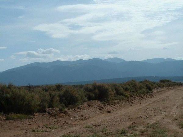 19: 5 AC COLORADO MT BLANCA VIEWS, 7900' ELEVATIO