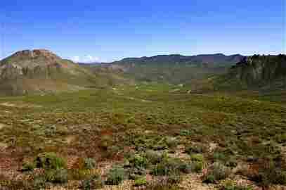 44C: 40 ACRE EAST OF RENO NEVADA,SURVEYED,