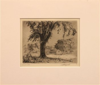 LO Griffith (1875-1956) Giant Elm