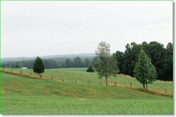 KENTUCKY LAND FOR SALE  7.4 AC.  BLUEGRASS COUNTRY