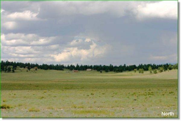 COLORADO LAND FOR SALE 5 ACRES NEAR BRECKENRIDGE!
