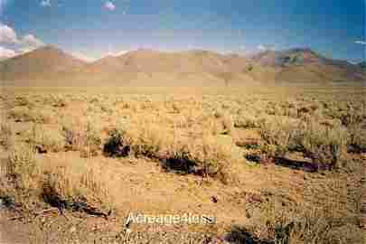 NEVADA LAND FOR SALE 39.92 ACRES!
