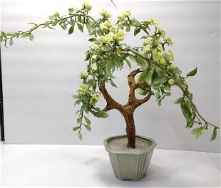 Jade Bonsai Glass tree in Celadon vase