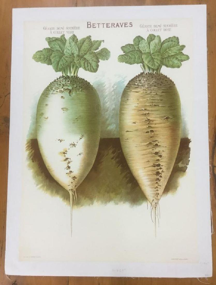 FRENCH VEGETABLE POSTER, C. 1915, LINEN BACKED,