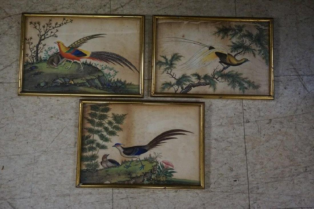 (3) EARLY ASIAN (?) PAINTINGS OF BIRDS ON RICE PAPER,