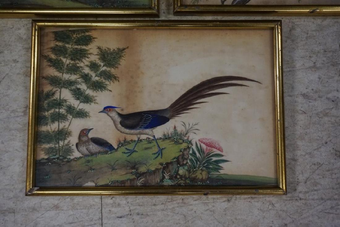 (3) EARLY ASIAN (?) PAINTINGS OF BIRDS ON RICE PAPER, - 4