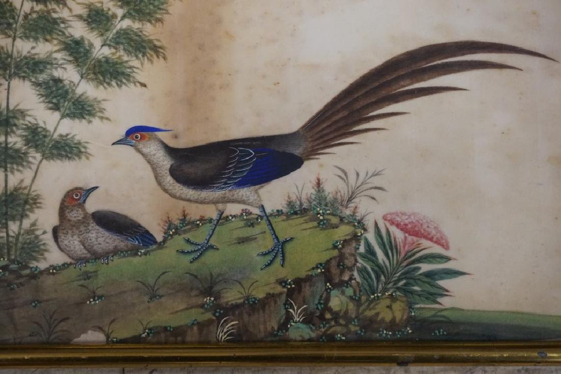 (3) EARLY ASIAN (?) PAINTINGS OF BIRDS ON RICE PAPER, - 7