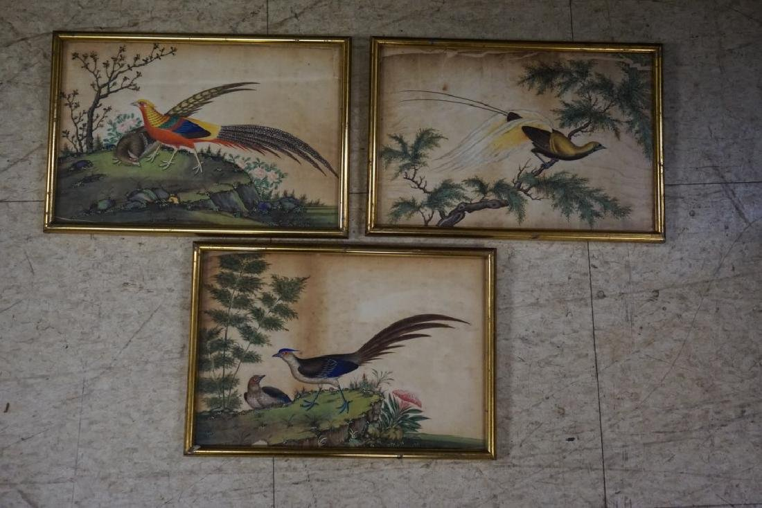 (3) EARLY ASIAN (?) PAINTINGS OF BIRDS ON RICE PAPER, - 8