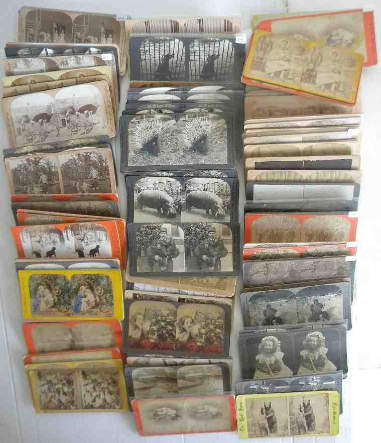 106 Animals Real Photo Stereoview cards, good mixed lot