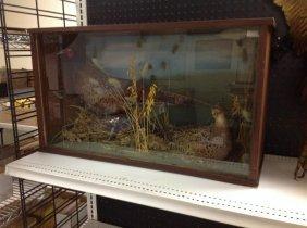 Diarama With Male & Female Pheasants, The Case Measures