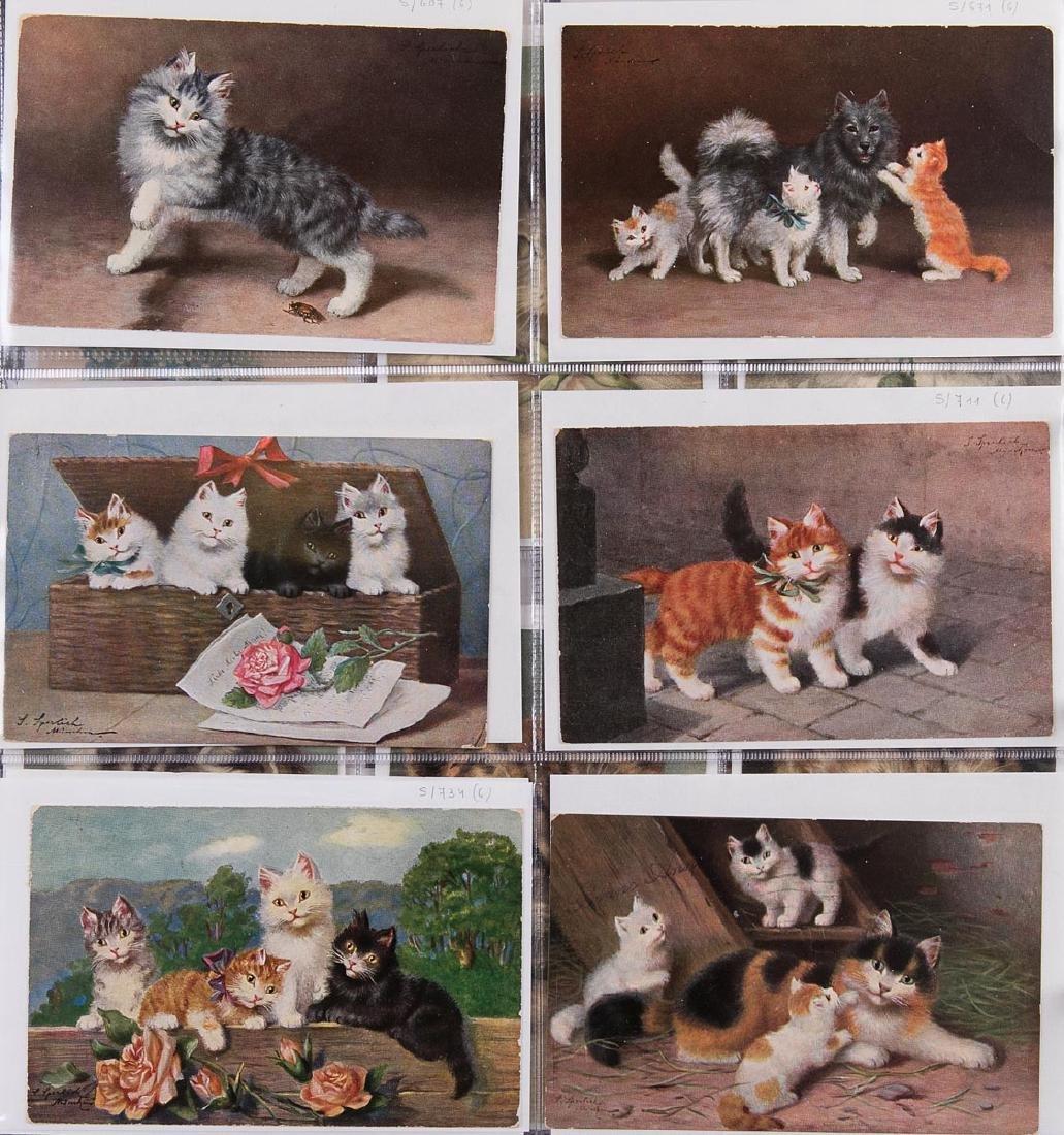CHATS. Ensemble 223 cartes postales illustrées de chats
