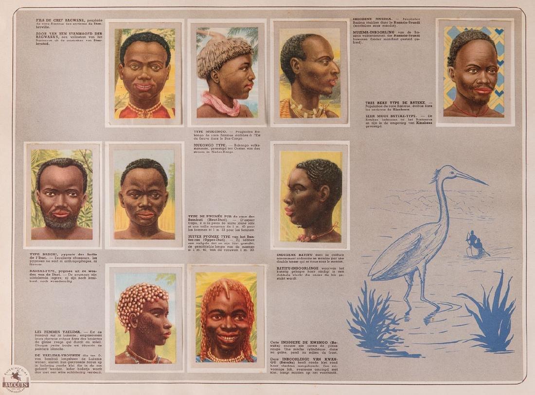 [CHROMOS] NOTRE CONGO = ONZE KONGO.