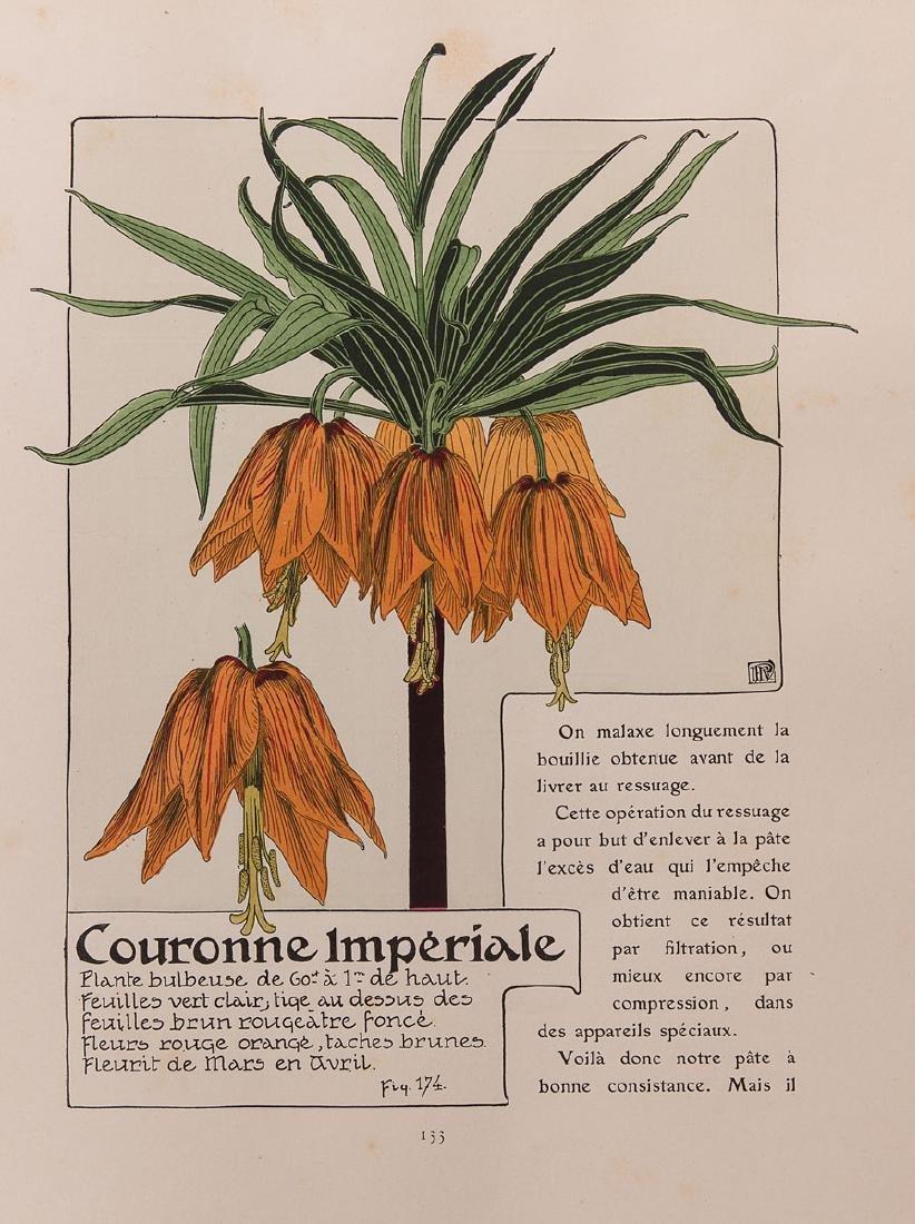 Maurice PILLARD DIT VERNEUIL - Étude de la Plante. Son