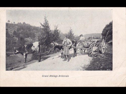 Ardennes & Fagnes. Environ 100 cartes postales.