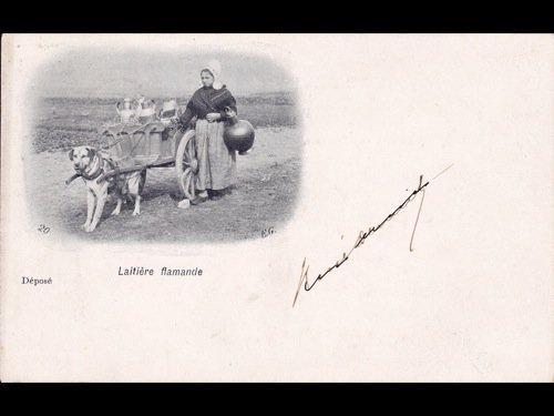 Laitières flamandes avec charrette à chiens. 5 cartes p