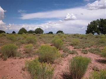 26: 37.55 Acres of Arizona Land near San Francisco Peak