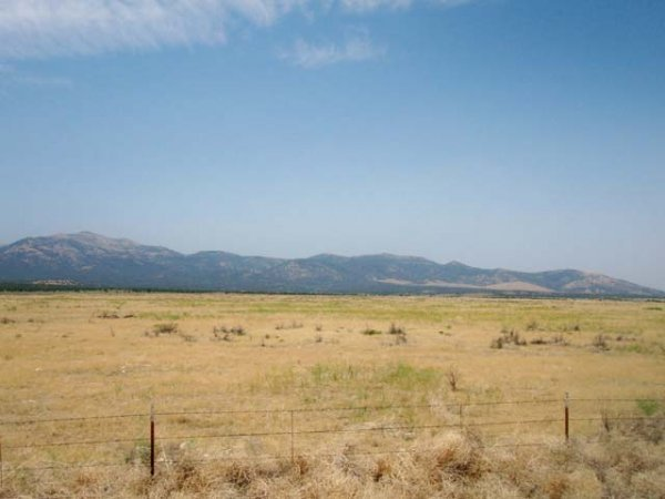 2004: 40 Acres Parcel in Humboldt County, Nevada!