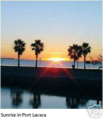 2 LOTS ALAMO BEACH TEXAS GULF OF MEXICO NEAR WATER CASH
