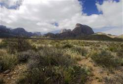50+ ACRES IN TEXAS NEAR BIG BEND NATIONAL PARK