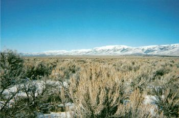 31: 160 ACRES, SUBDIVIDED IN 40 ACRES PARCELS, UTAH